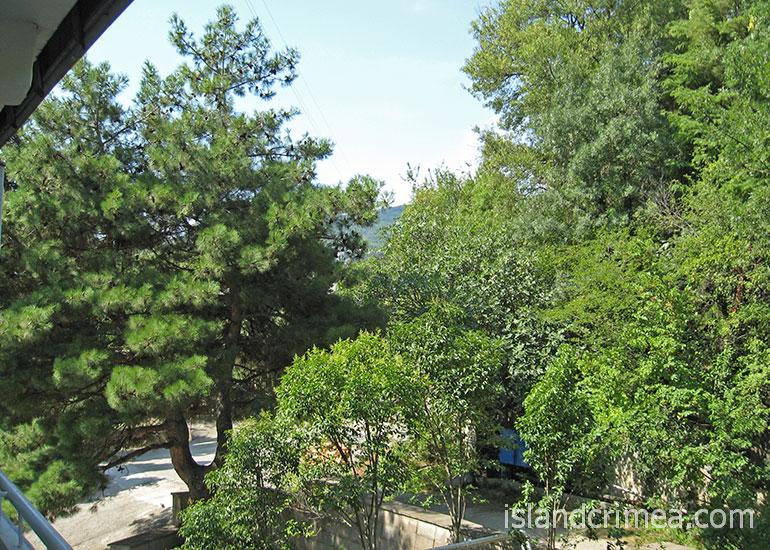 Санаторий им. Кирова, вид с балкона, номер стандарт, горы.