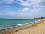 """Пансионат """"Виренея"""", пляж"""