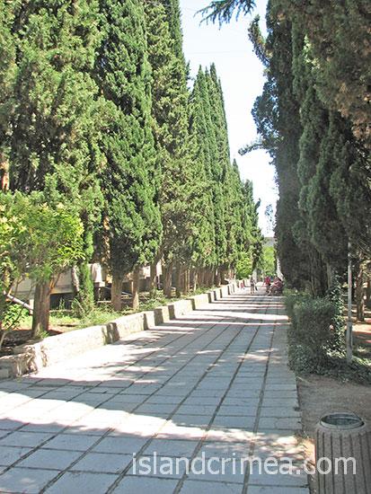 Кипарисовая аллея санатория Алушта.